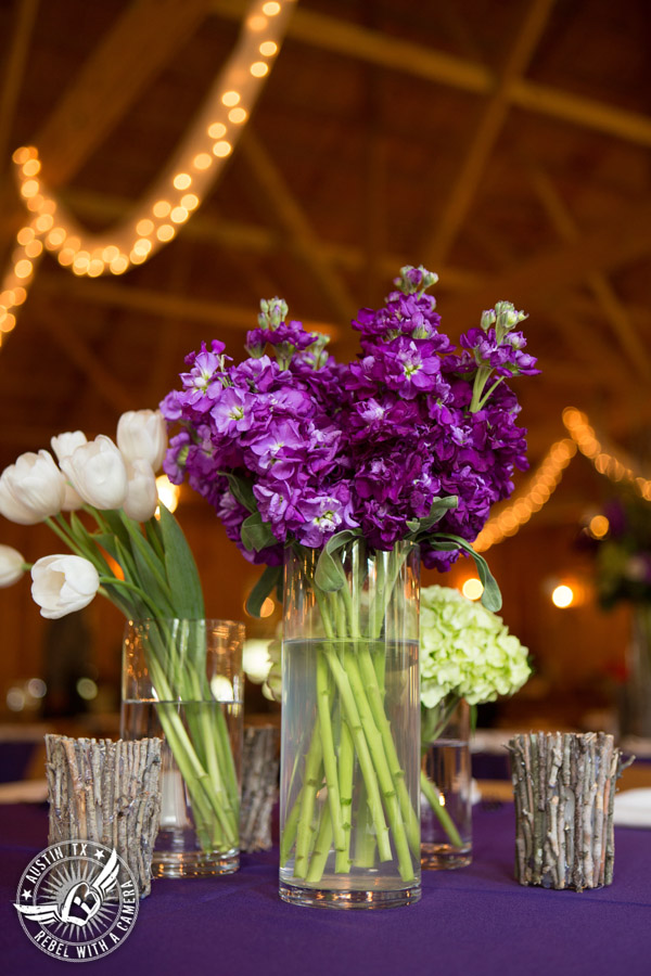 Sage Hall wedding photos at Texas Old Town florals by STEMS Floral Design
